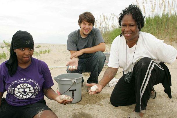 Teenagers_on_beach_collect_loggerhead_turtle_eggs (1)