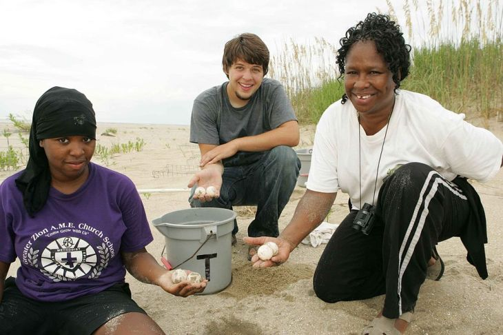 Teenagers_on_beach_collect_loggerhead_turtle_eggs (1)