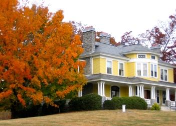 Ashev. maple w yellow house