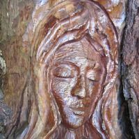 Tree Spirits of St. Simons: The Other Woman