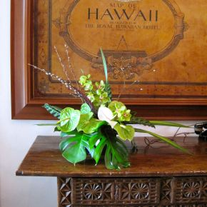 An Old Love Affair: HalcyonHawaii