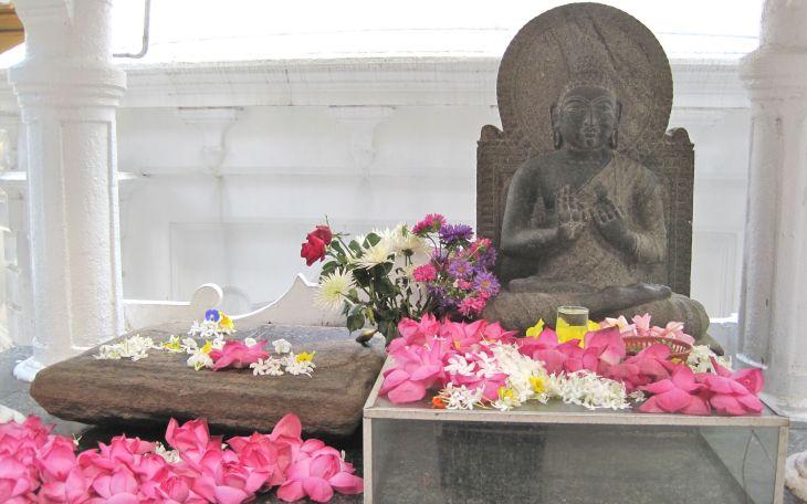 Buddha w Petals