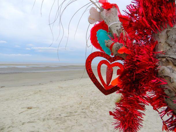 Heart on Beach Tree