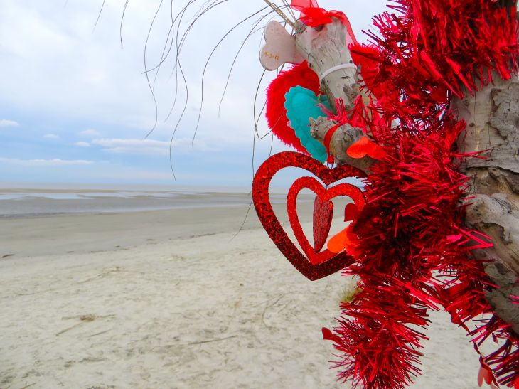 Heart on Beach Tree