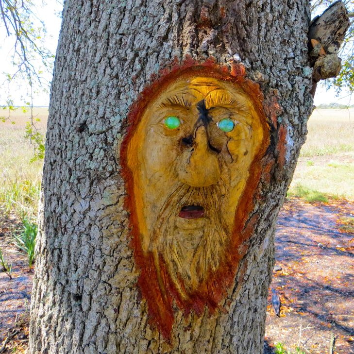 Tree spirit bait shop