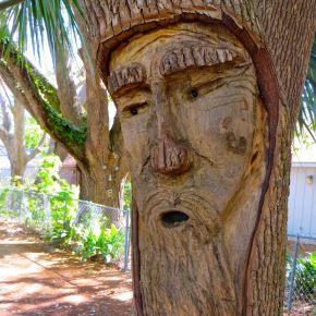 Tree Spirits: The ZZ TopCollection