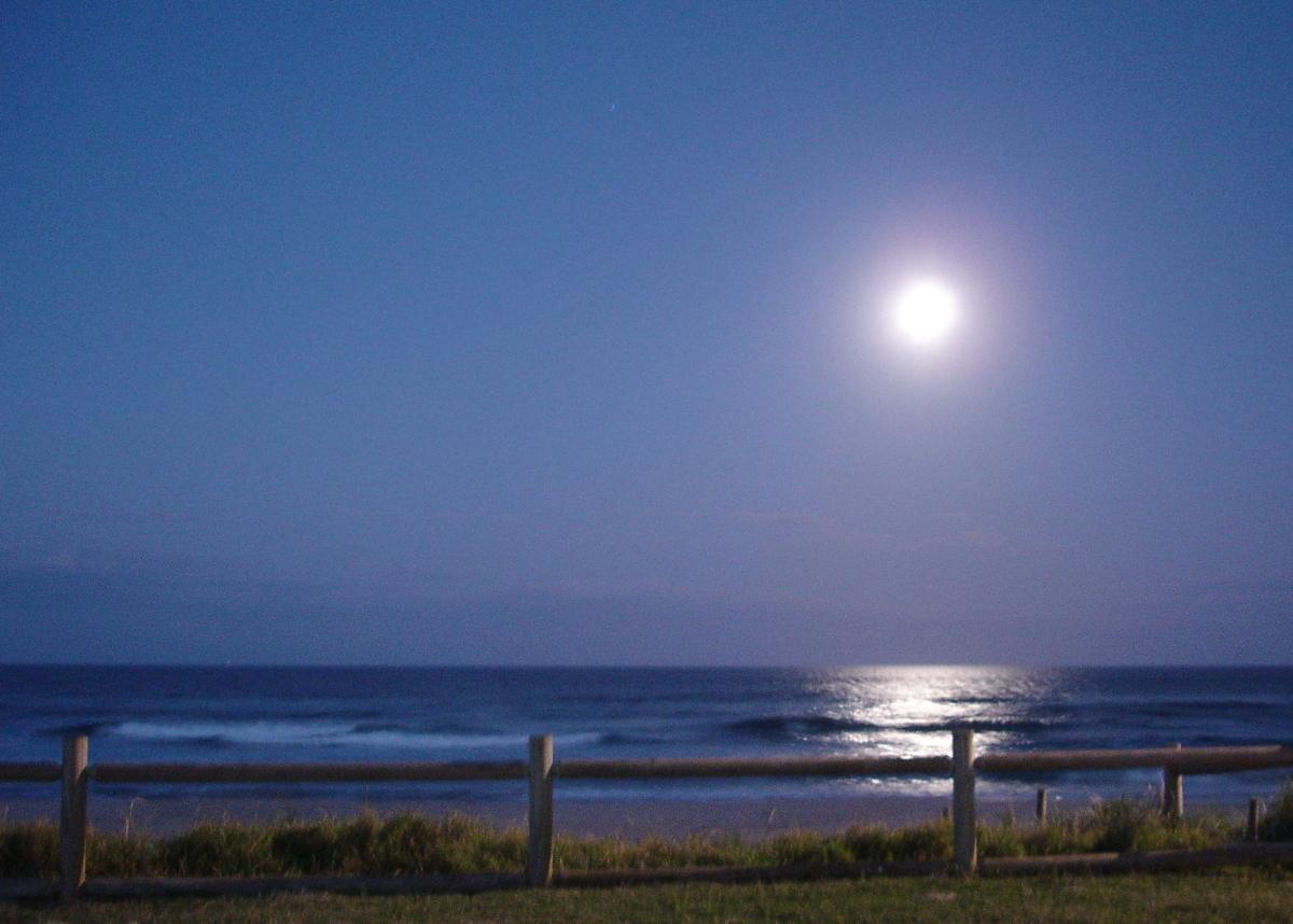 Makin' Whoopee On The Beach: Blame It On The Moon