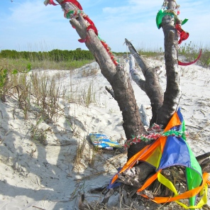 Kite-eating Tree