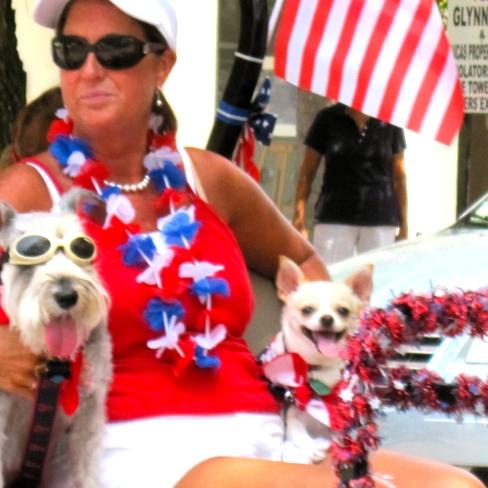 Patriotic Dogs