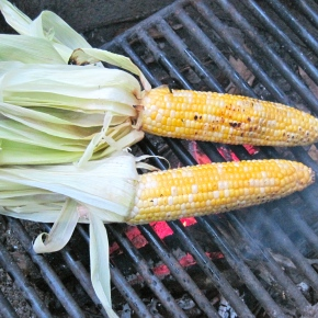 The Zest Of Camping: 7 Tips For Cooking Over A WoodFire