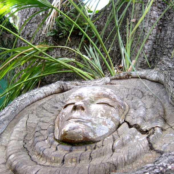 Green Palm Sprouting from Tree Spirit