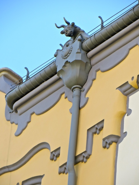 Gymnazium Downspout