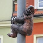 A Pole Dwarf