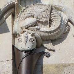 Dragon Downspout