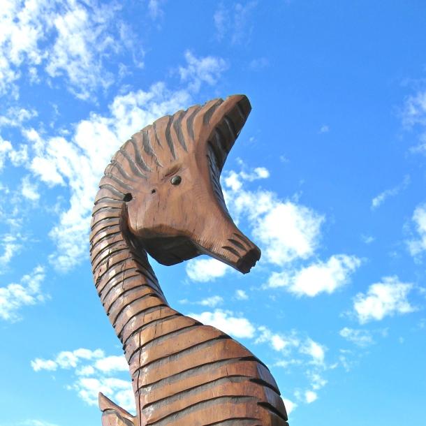 Seahorse FI