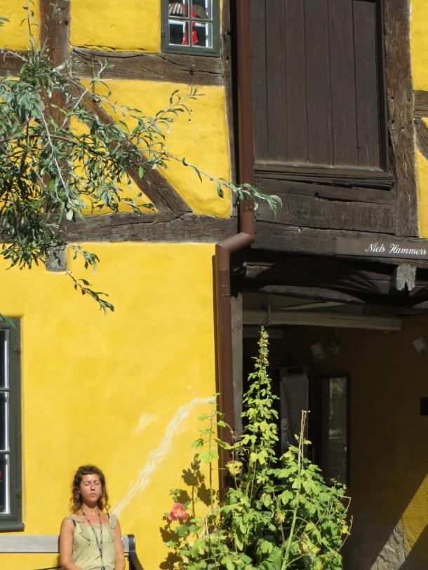 Yellow Half-timber house