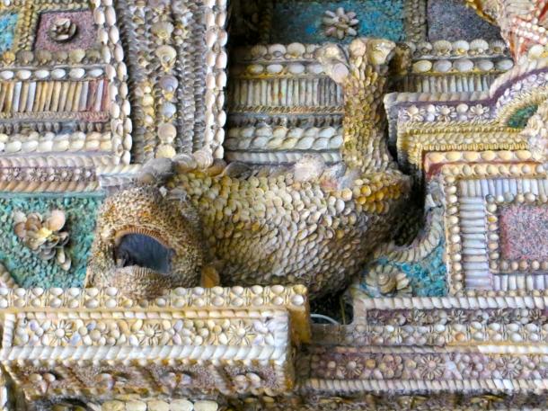 Grotto fish