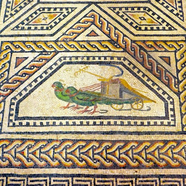 Parrot Mosaic