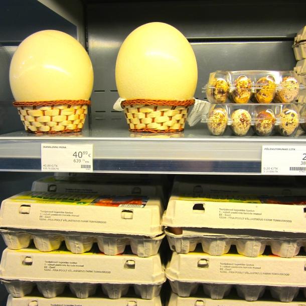 Ostrich, Quail or Chicken Eggs?