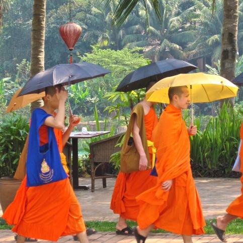 Morning Monks