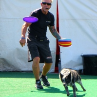 These hard woking rescue dogs love to chase frisbees.
