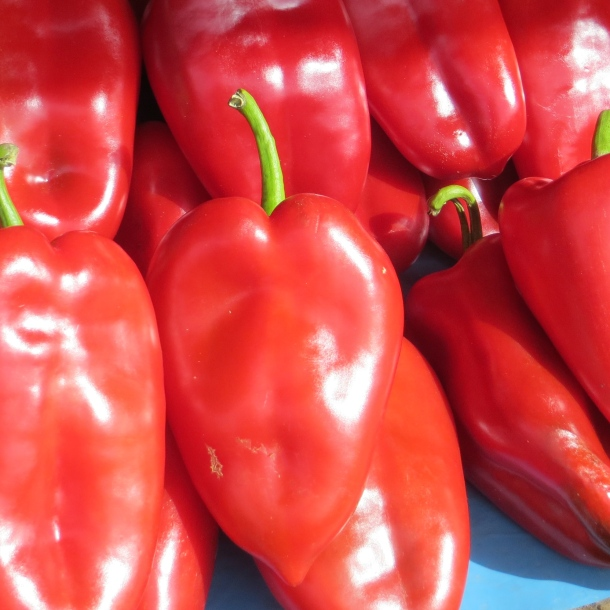 Peppers in Novi Sad, Serbia
