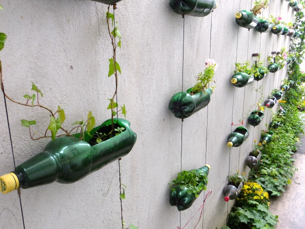 Beer Bottle Planters