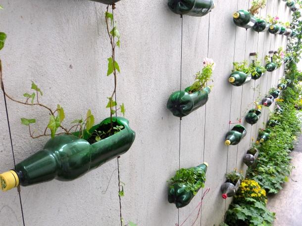 Beer Bottle Planters