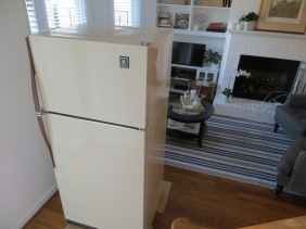Old fridge ready for a new home.