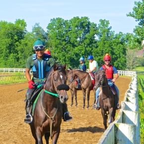 From Yearling to Racehorse: In Two Not-So-EasySteps
