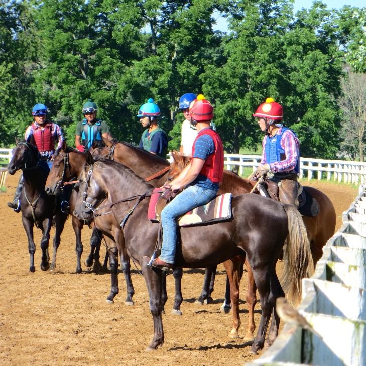 Jockeys confer