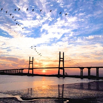 Seohae Bridge in South Korea