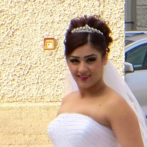 A Bevy of Brides Across Europe