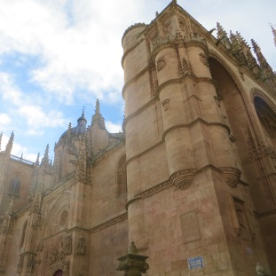 Salamanca Cathedral 2