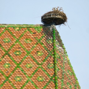 Colmar Stork's Nest