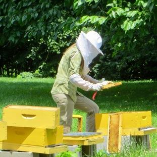 Shaker Village Beekeeper