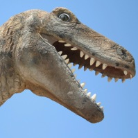Dinosaur Head 2