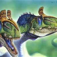 The End of the Dinosaurs and the K-T Boundary: Touching the Proof