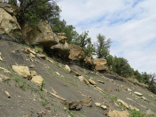 Hillside to KTB
