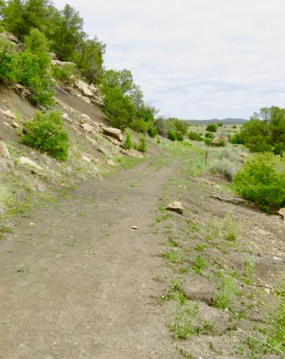 Path 2 2