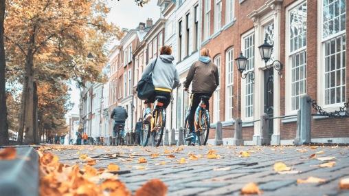 Netherlands Bikes in Autumn
